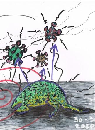 2020-03-30 - Le pangolin (2)